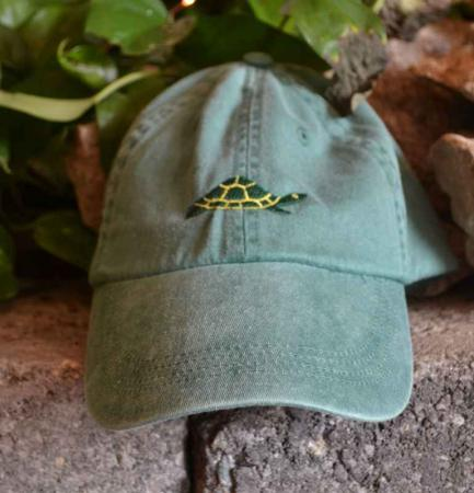 Diane The Turtle Adult Hat
